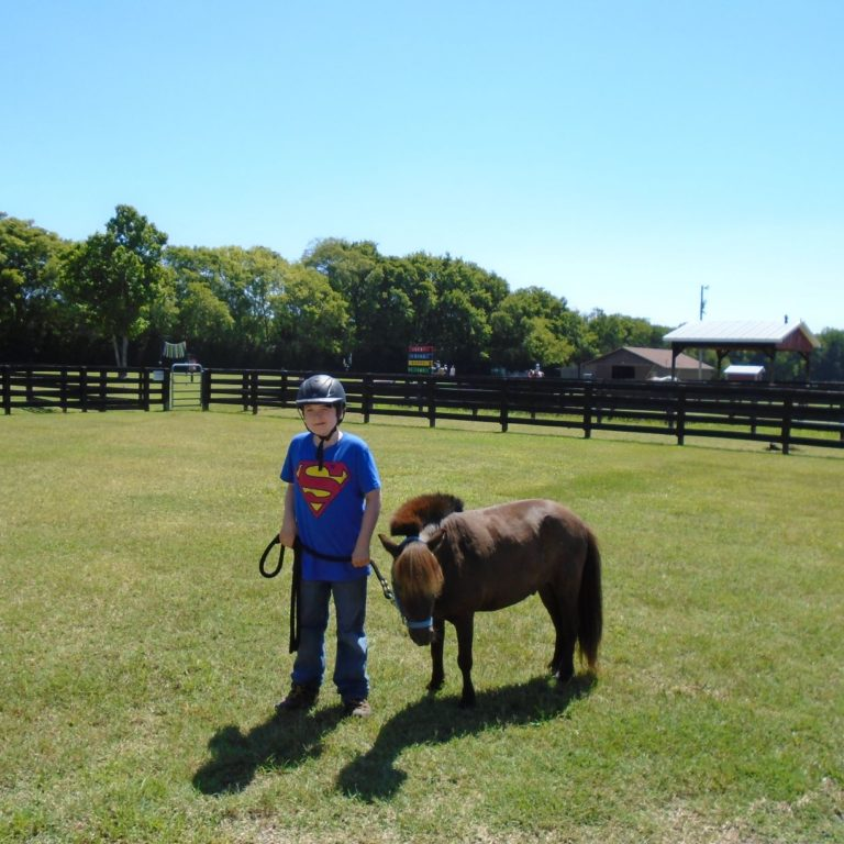 rider-horse
